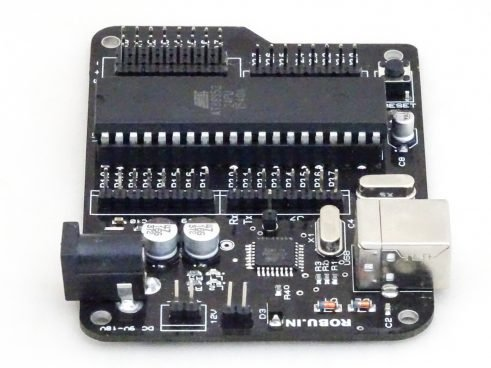 Aryabhatta 8051 Microcontroller Development Board AT89S52 with Onboard USB Programmer