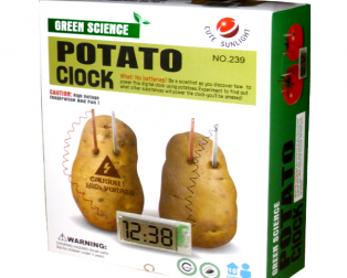 Creative LED Alarm Clock Conversion of Energy & Battery by Potato Lemon Fruit Soft Drink 1