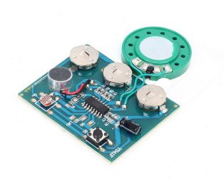 30S Sound Voice Music Recorder Board Photosensitive Wired Double button control Programmable Chip Audio Module